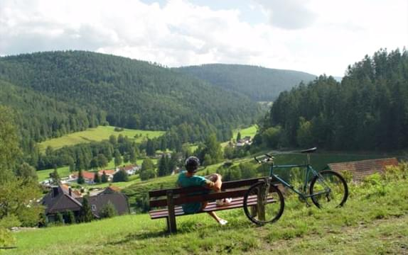 Enztal Bike Trail